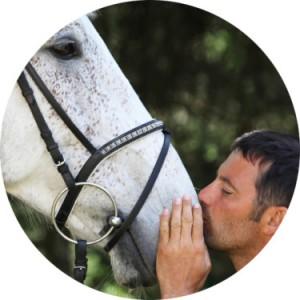man kissing a horse